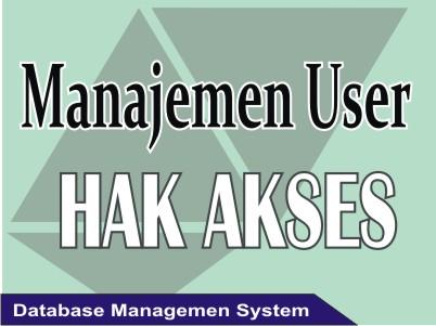Manajemen User dan Hak Akses